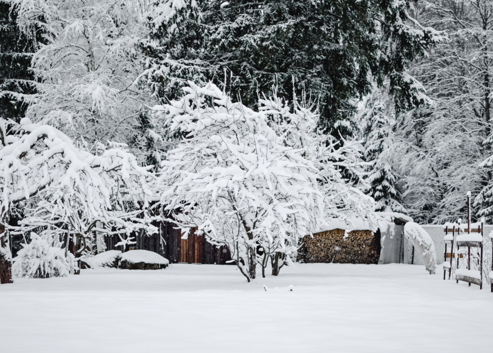 What to do when it's too cold to plant