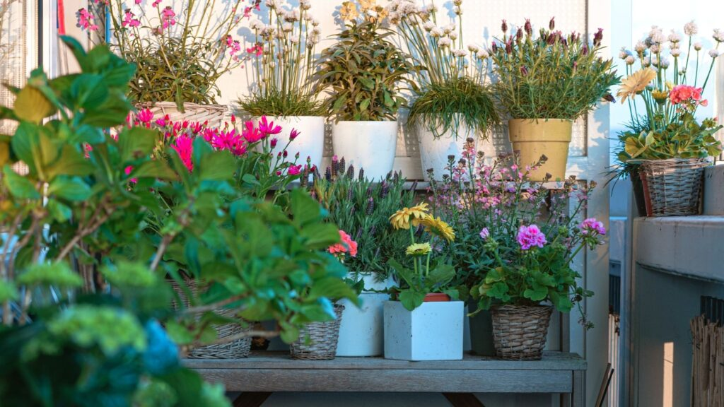 National Gardening Week 2021