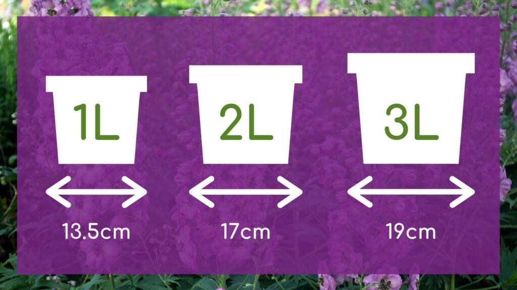 How Big Is A 1, 2 Or 3L Plant Pot?